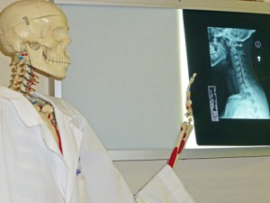 skeleton pointing at xray